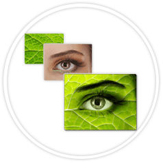 Beeldmontage oog voorbeeld